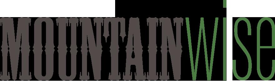 MountainWise Logo